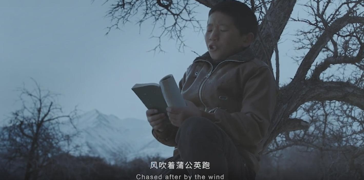 频频爆红的故事性广告,都有哪些共同的套路?
